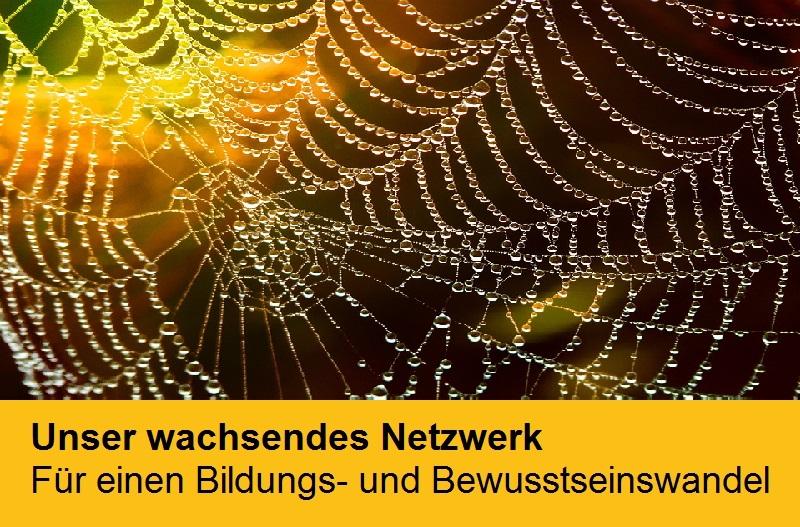"""Spinnennetz mit Tautropfen als Symbol für """"Unser wachsendes Netzwerk - Für einen Bildungs- und Bewusstseinswandel"""""""